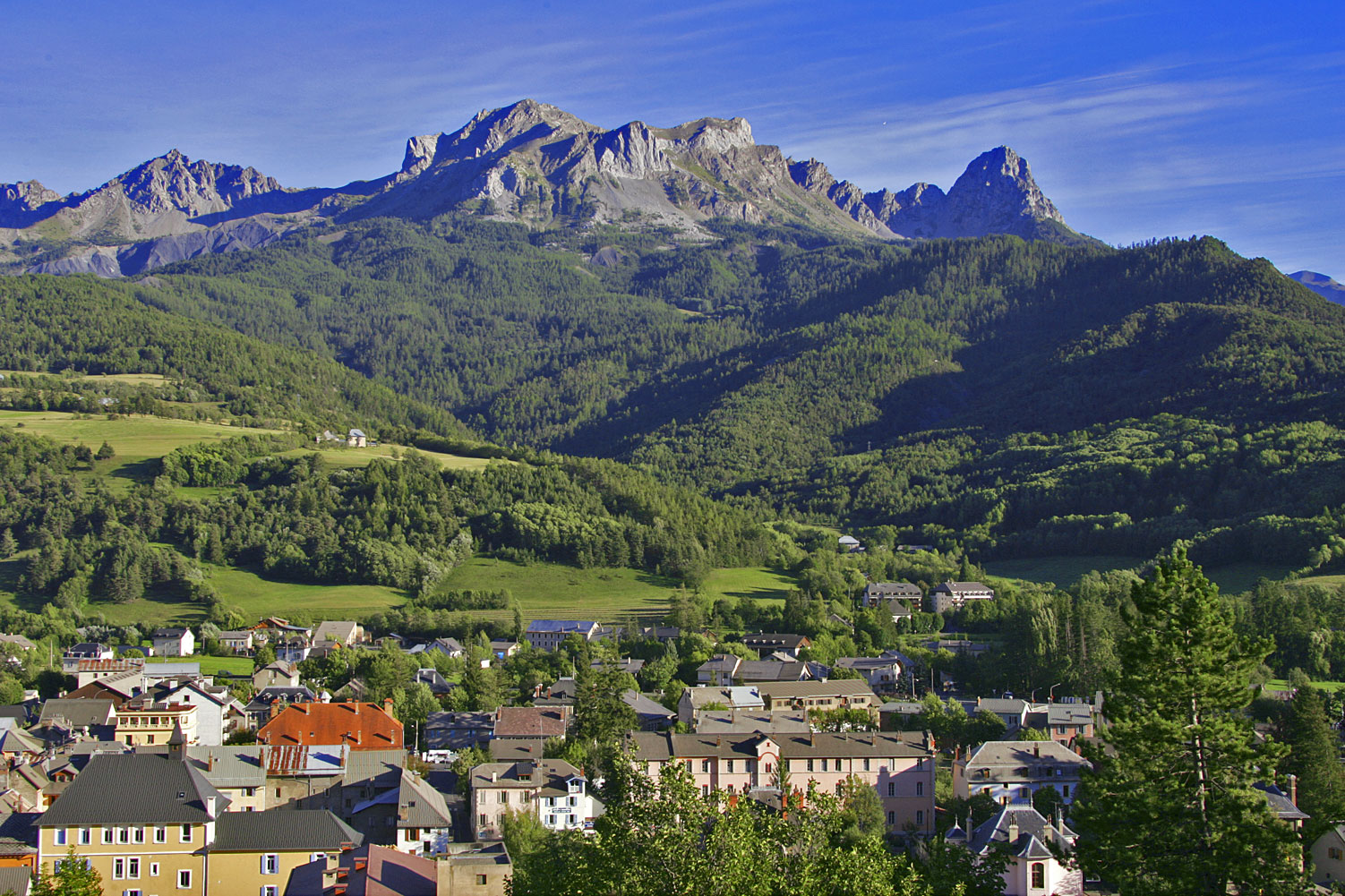 Under the splendid sunshine<br>of Alpes-de-Haute-Provence